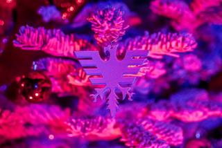 Offres Noël, Jour de l'An, Début janvier