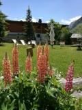 fleurs-terrasse-hotel-bellier