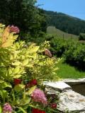 lotoumel-terrasse-sud-est-600x800-522429
