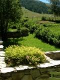 lotoumel-vue-rez-de-jardin-sud-est-600x800-522427