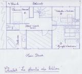 plan-plante-de-baton-2-1259